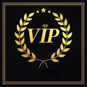 VIP Link For 0191 Earrings Cosstore