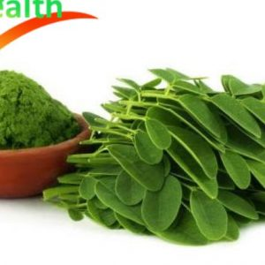 Moringa Extract Tablets enhance the immune system and improve personal health