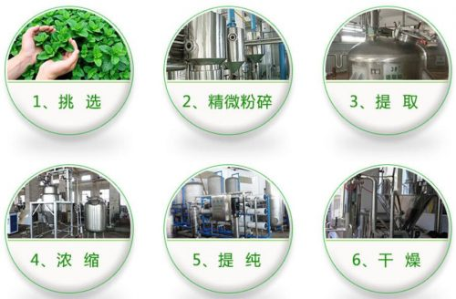 200 grams,Natural& High quality Moringa leaf Extract powder Increases the body s immune system 5