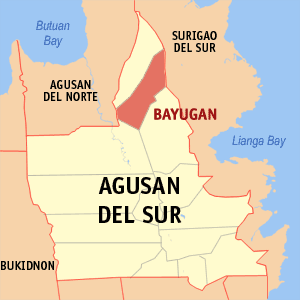 Bayugan city map locator.png