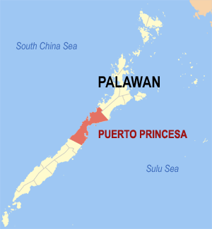 Puerto Princesa City Map