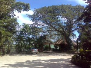 Woodland resort of zambowood zamboanga city 1.jpg
