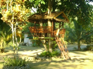 Puerto Villa Small tree house.jpg