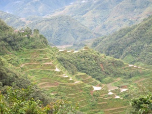 IfugaoTerraces, Philippines.jpg